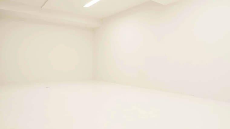studio briller 白ホリ