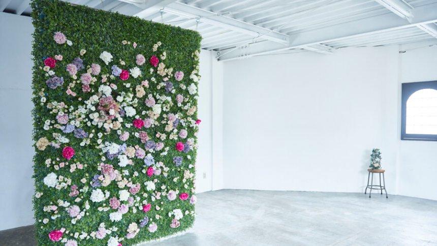 Studio Union 花の壁