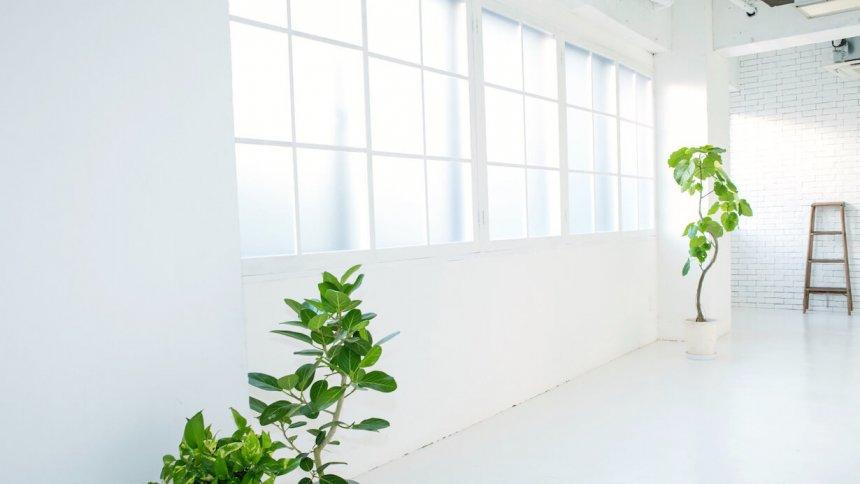 studio Flocke 神泉 自然光