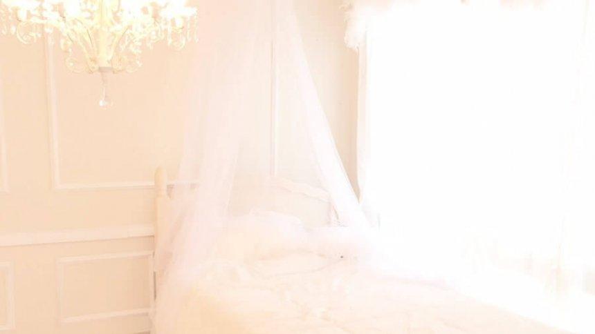 micia premium 天蓋ベッド2
