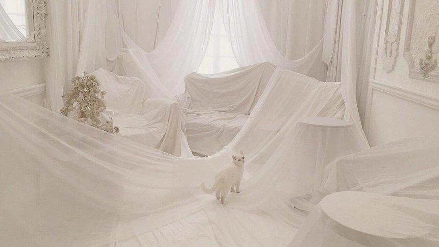 Studio Lumiere'k 白い布