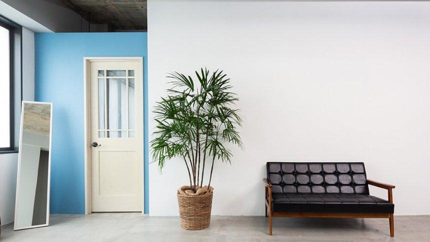 フォトスタジオ ジラフ 白い壁1